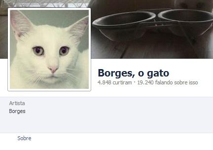 numeros_da_fanpage