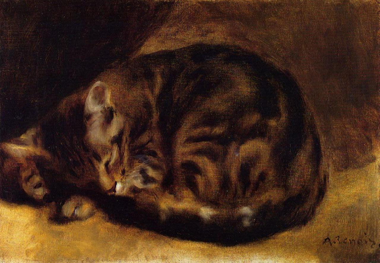 sleeping-cat-1862