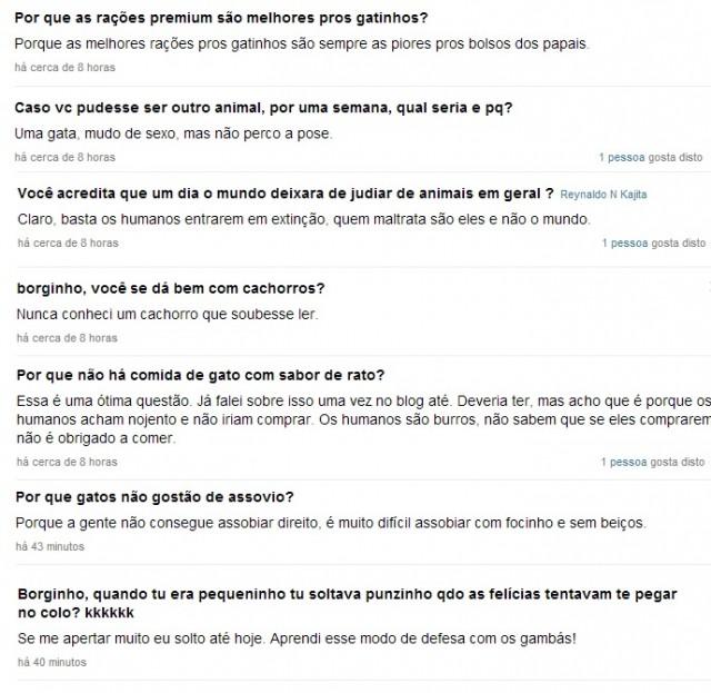 perguntas1