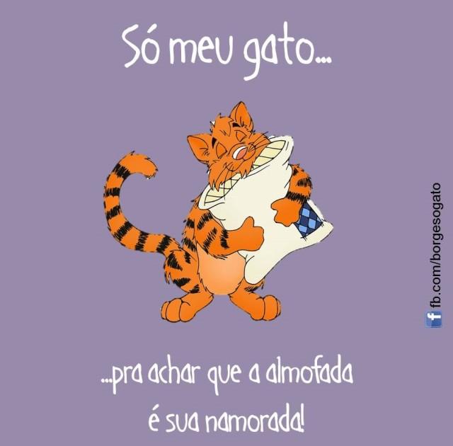 3 - Lucas Ferreira