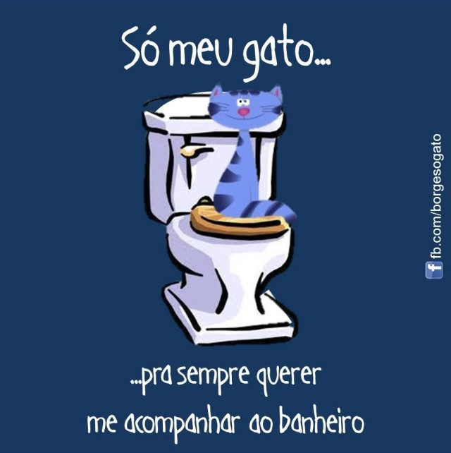 6-Vivian Barbosa