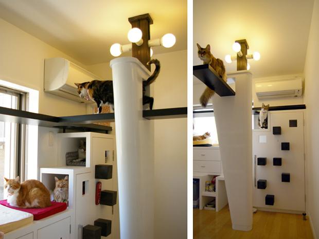 catfriendl-house-2