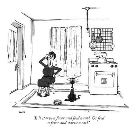 george-booth-is-it-starve-a-fever-and-feed-a-cat-or-feed-a-fever-and-starve-a-cat-new-yorker-cartoon