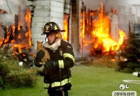 gato-salvo-por-bombeiro