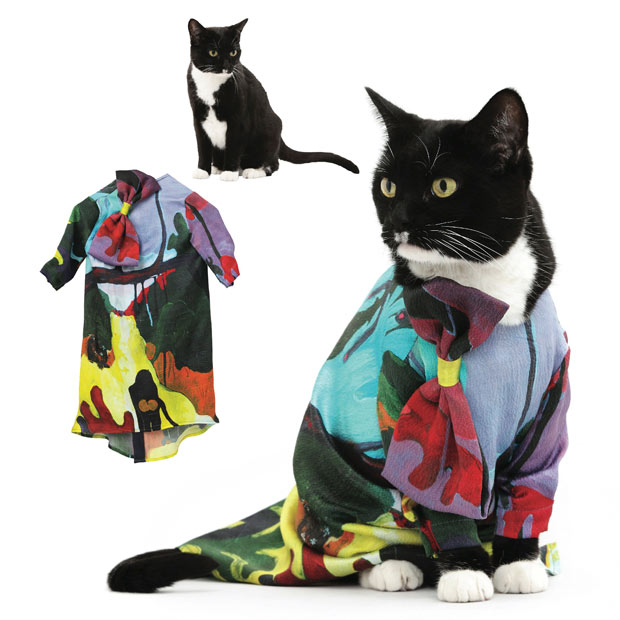 cat-fashion-July_1773588i