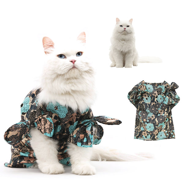 cat-fashion-april_1773596i