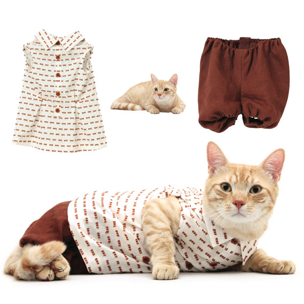 cat-fashion-june_1773587i