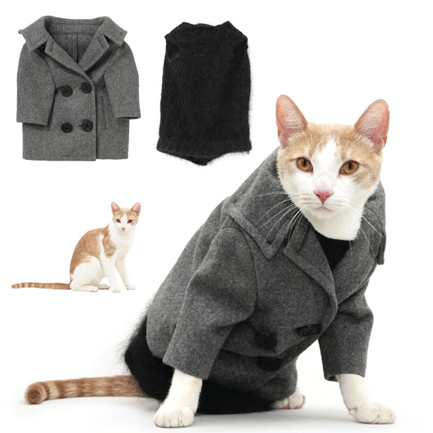 cat-fashion-novemb_1773583i