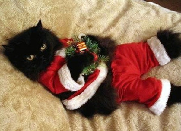 santa-claus-black-cat-holiday-e1324402167783