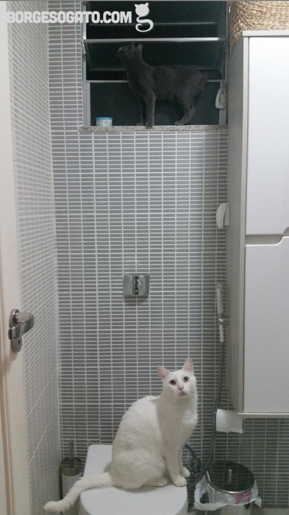 pessoa_banheiro_3