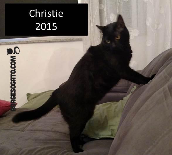 chrsitie2015