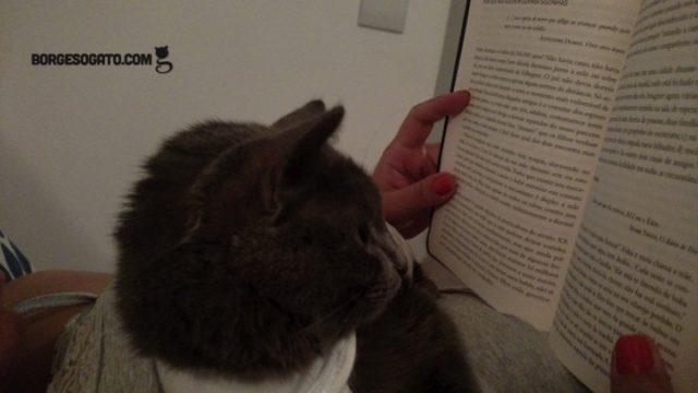 pessoa-lendo