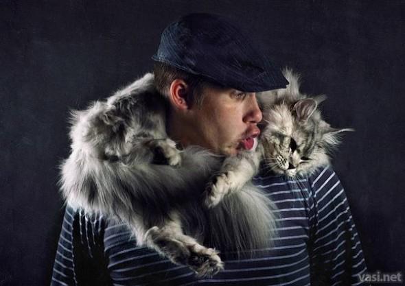 gatocachecol