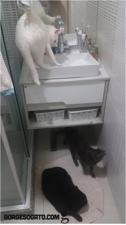 reuniao-banheiro2