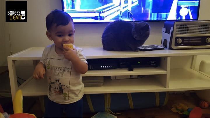 chico-milho