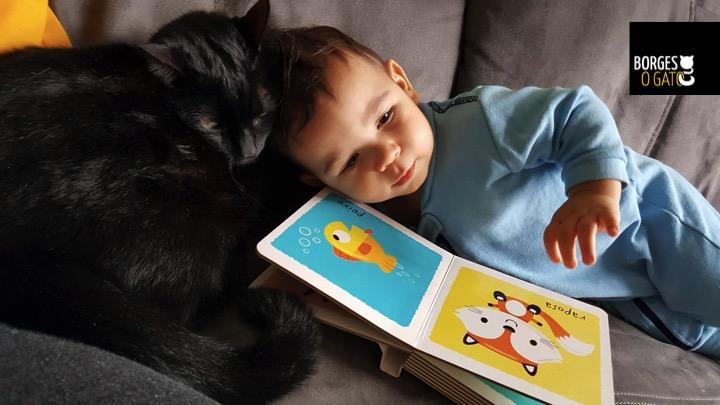 chiquinho-leitura