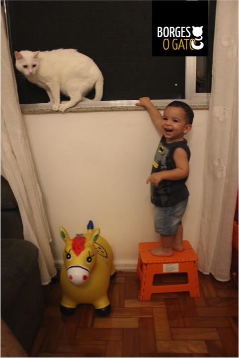 borginho-janela-chico2