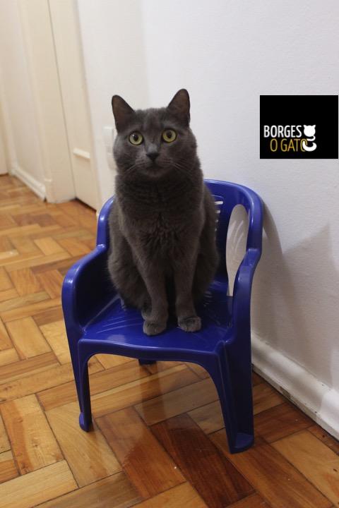 pessoa-cadeira